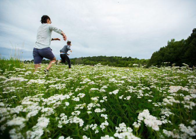 Blomstereng på Langøyene