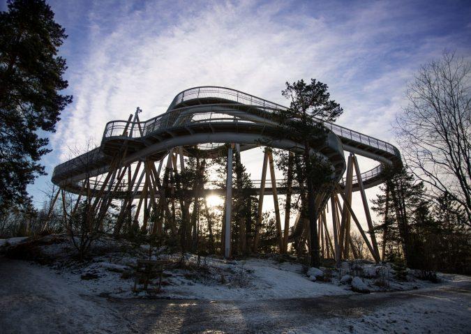 Gå tur mellom tretoppene i Stovnertårnet